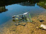 WWF warns British rivers used as 'open sewers' and UK waterway clean-up is failing