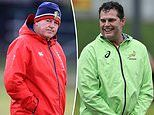 Lions and Springboks off the leash at last after a troubled tour build-up