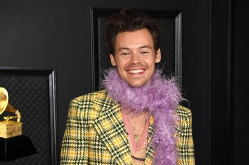 Harry Styles to go nude for sex scenes as he plays gay policeman in new movie