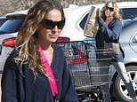 Sarah Jessica Parker stocks up on groceries in The Hamptons. just two days after turning 55