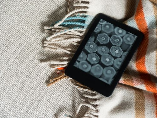 Amazon's entry-level Kindle is a great ereader for people on a budget who want to get into ebooks