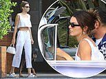 Kendall Jenner shows off her taut tummy in a white crop top while dining with friends in Malibu