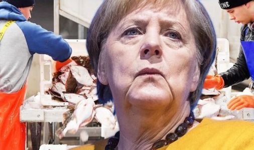 German fishing disaster: Baltic Sea ban could trigger COLLAPSE of fishing tourism