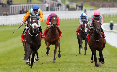 Templegate's horse racing tips: Hamilton, Plumpton and Uttoxeter - Templegate's betting preview for racing on Sunday, September 23