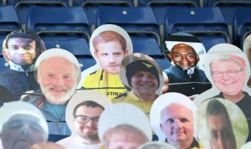 Royal shock: Football fans spot hilarious tribute to Prince Harry at football match
