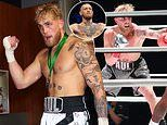 YouTube star Jake Paul says he wants to fight Conor McGregor after knocking out Nate Robinson