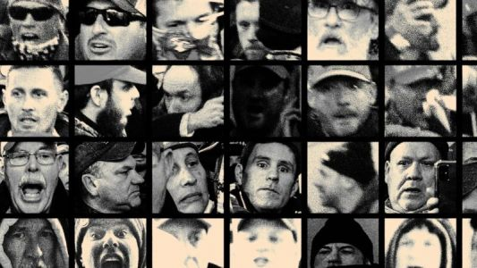 This site posted every face from Parler's Capitol Hill insurrection videos