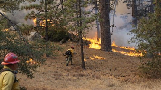Why isn't California using more prescribed burns to reduce fire risk?