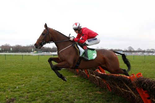 Welsh Champion Hurdle: Live stream, race time, runners and riders, tips and trainer quotes ahead of the Ffos Las feature