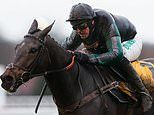 Nicky Henderson says it's 'highly unlikely' Altior will race at the King George VI Chase at Kempton