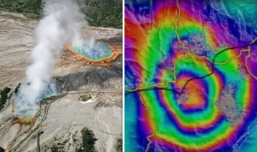Yellowstone:Why animal deaths sparked panic as 'strange things' happened to supervolcano