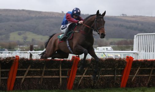 Top staying hurdler Paisley Park to return to action at Newbury next month