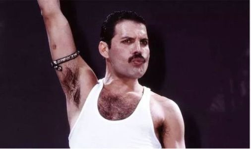 Bohemian Rhapsody: Star Wars and Dune actor turned down chance to play Freddie Mercury
