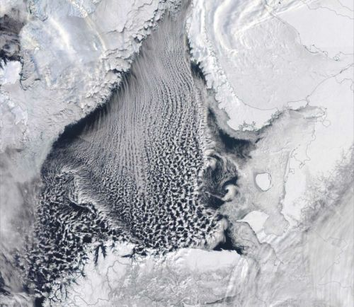 "Missing Arctic ice fueled the ""Beast of the East"" winter storm"