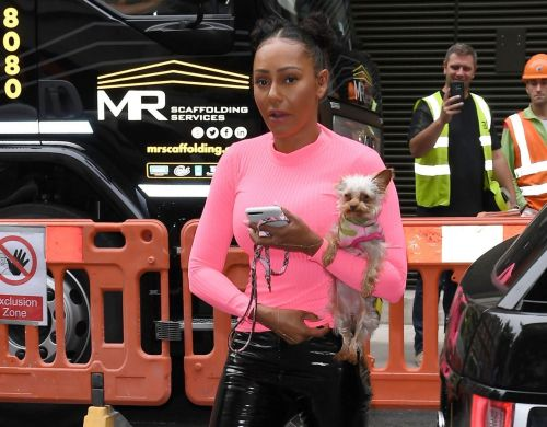 Mel B is all about saving water as she showers with family dog