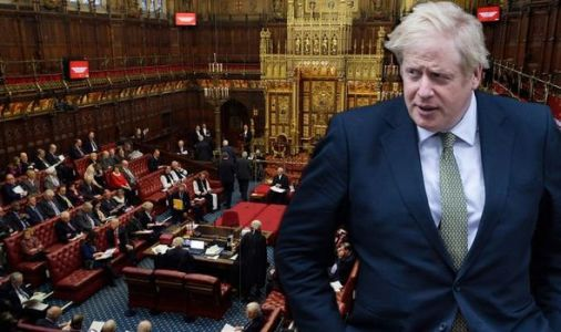 Brexit latest: Can the Lords block Brexit? House of Lords role explained