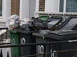 Bins overflow as councils scale back some collections
