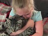 Seven-year-old girl reunited with her cat Freddie after he is missing for 10 months in Hampshire