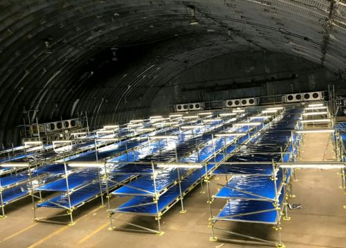 Chilling photos reveal new morgue built to hold 5,000 coronavirus victims