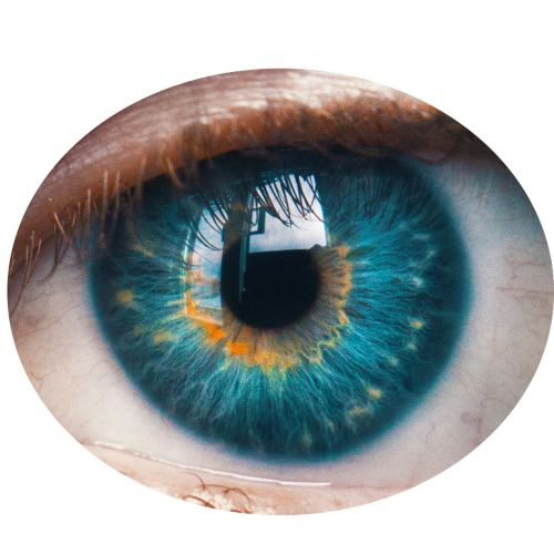 Five Biometric Security Methods Your Business Could Consider