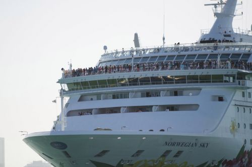 Can I book a cruise holiday now - what are the current rules?