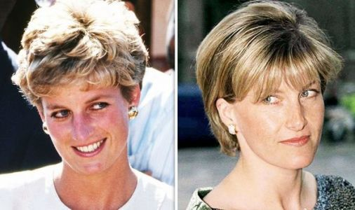 Princess Diana's withering nickname for Sophie unveiled as royal seen as 'competition'