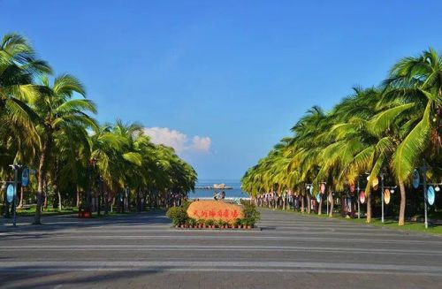 6 scenic spots in Sanya to offer free entry for medical staff