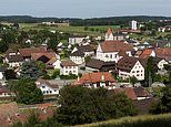 Swiss village will subsidise burglar alarms for all of its 1,200 residents
