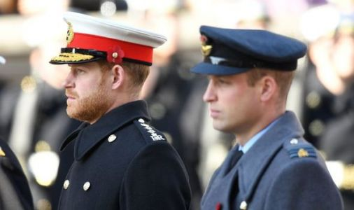 Royal rift: Prince Harry and William in shock split over Diana fund