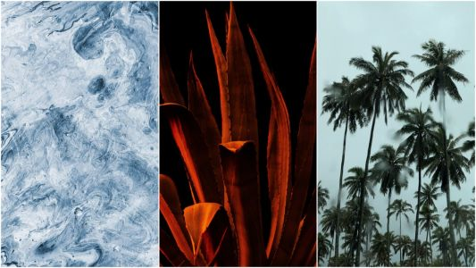 5 Wallpapers That Will Look Perfect On Your iPhone | 71