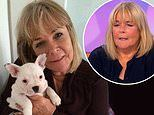Linda Robson reveals her heartache after her beloved French bulldog Ernie passed away