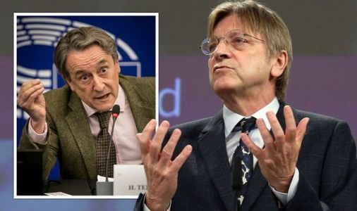 'You're the reason to fight!' Verhofstadt sparks fury of fellow MEPs with attack on Brexit