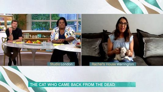 This Morning viewers baffled as guest reveals she unknowingly cremated someone else's cat