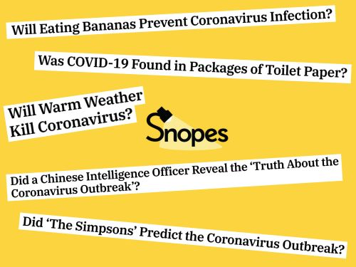One of the internet's oldest fact-checking organizations is overwhelmed by coronavirus misinformation - and it could have deadly consequences