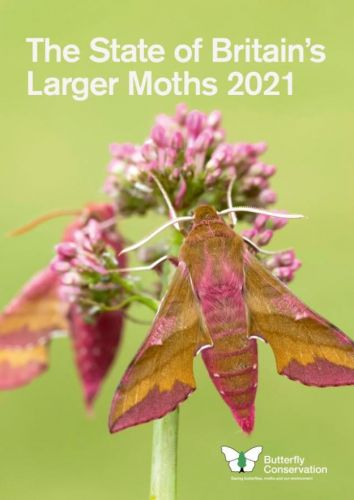 The State of Britain's Larger Moths 2021