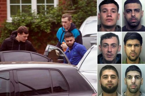 Gang who stole £500k of luxury cars caught after amateur sleuth snaps photo
