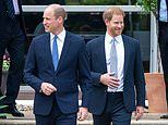 William 'mentions Harry by name' in 'sweet and intimate' speech thanking friends for Diana statue