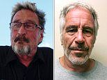 Antivirus pioneer John McAfee says Jeffrey Epstein did NOT kill himself