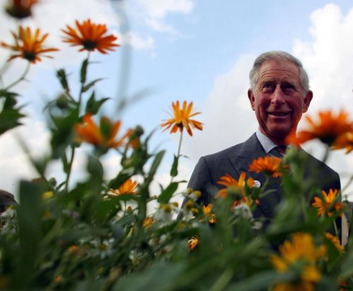Prince Charles launches new climate change channel for Amazon Prime