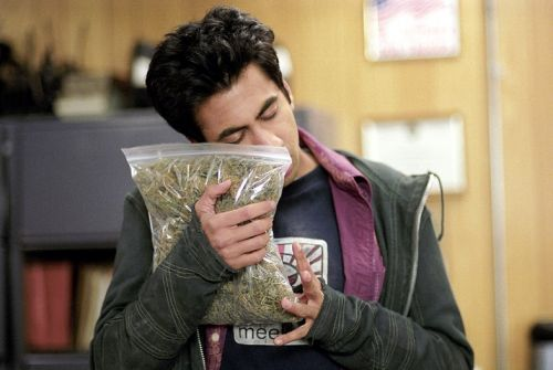 Public support for legalising weed is growing in the UK