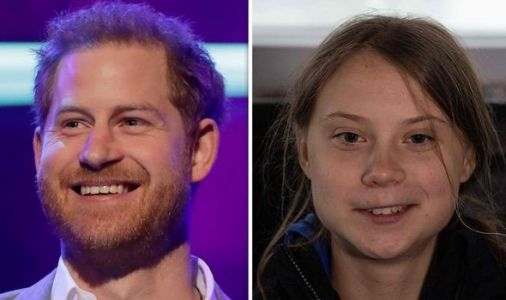 Prince Harry lavishes praise on Greta Thunberg - 'The whole world is paying attention'