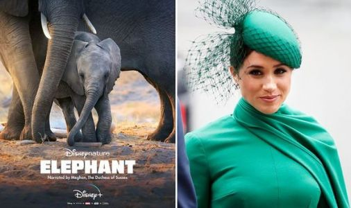 Meghan Markle fans praise Duchess of Sussex's 'ANGELIC voice' in Disney Plus Elephant film