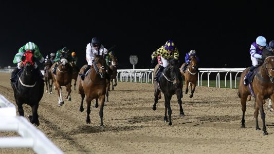 Daily Racing Tips: Timeform's three best bets at Newcastle on Monday