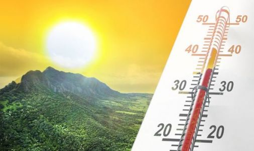 Global warming slowing down? 'Ironic' study finds more CO2 has slightly cooled the planet