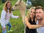 Isla Fisher, 44, cuts a youthful figure as she poses next to pal Elsa Pataky's horse
