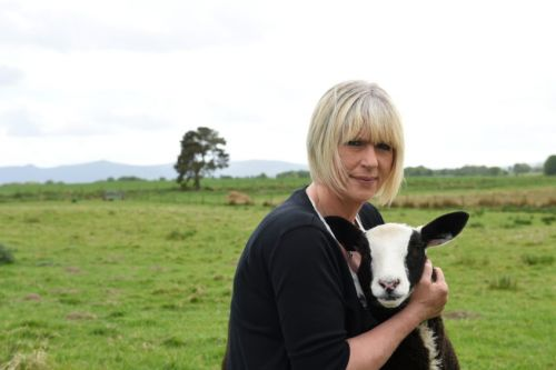 VIDEO: Little lamb abandoned at five days old given permanent home by kind north-east couple