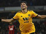 It looked like Nuno Espirito Santo needed a ruthless finisher now Raul Jimenez might be the answer