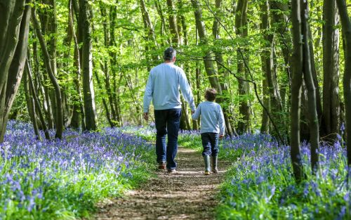 Father's Day 2021: Paganism, roses and how the campaign to celebrate dads was won