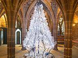Artist and blacksmith use 500 fully recyclable bottles to create xmas tree for cathedral
