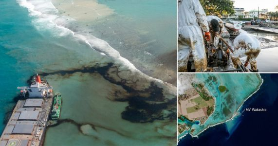Race to contain seven-mile oil spill killing wildlife around Mauritius